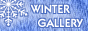 Winter Gallery